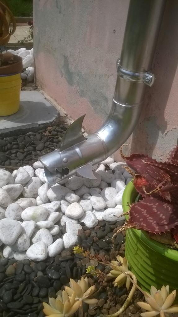 Sortie d' eau pluviale - Requin 002